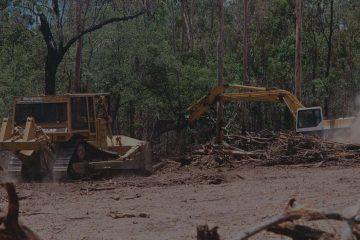 proses land clearing sebagai bagian dari pembangunan pabrik